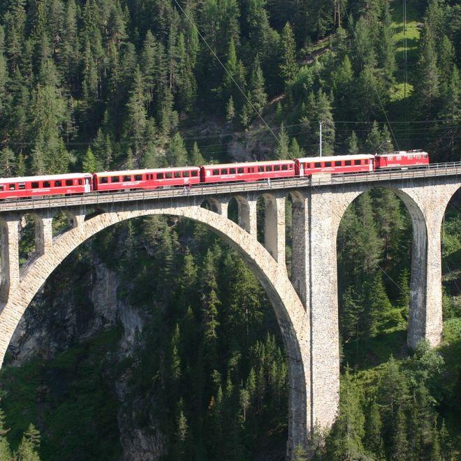 Alpensternreise zum Muttertag