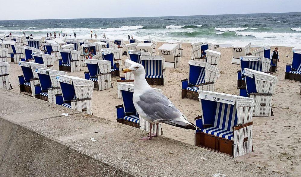 Paradiesische Ostseeküste - Hamburg