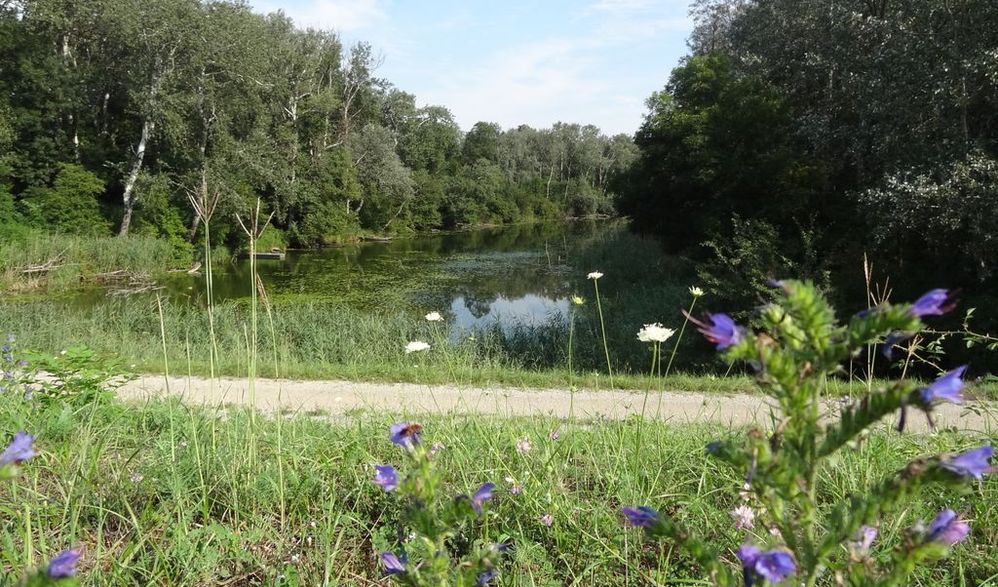 Faszination Donauradreise - 2. Etappe: Aschach - Mohacs