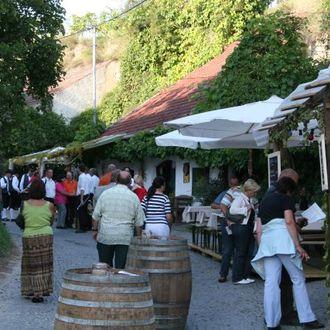 Kellergassenfest in der Wachau – Rohrendorf