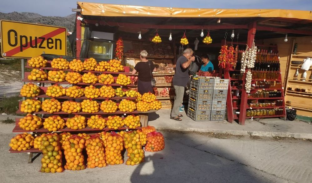 Mandarinenernte