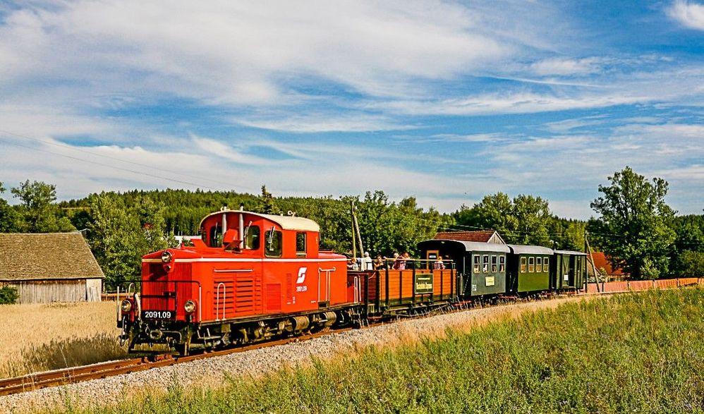 Wackelstein Express