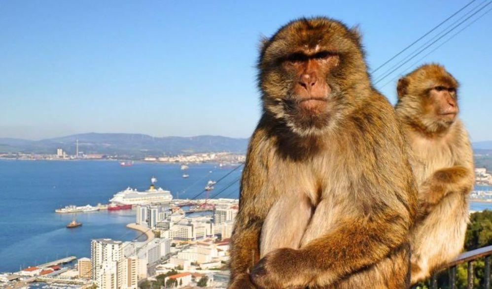 Gruppenkreuzfahrt Mittelmeer mit Andalusien - neue Mein Schiff 2